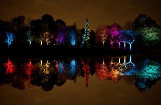 Syon Park Enchanted Woodland