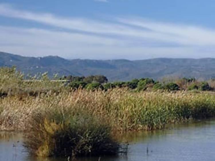 Espai Natural del Delta del Llobregat i el seu Parc Agrari