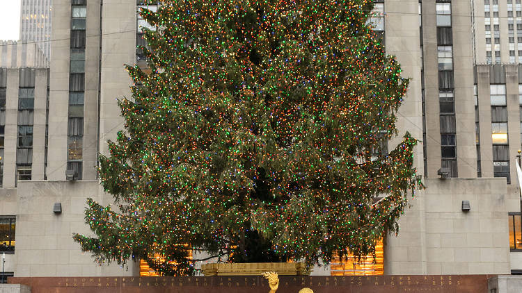 Rockefeller Center Christmas tree and ice skating rink, 2013