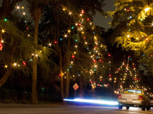 Christmas lights in Los Angeles: Christmas Tree Lane.