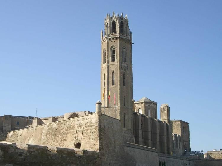 Admireu la Seu Vella i el Castell del Rei - Suda