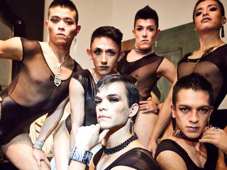 La Cebra Danza Gay