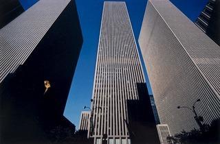 Harry Callahan (New York, printed 1979-89)