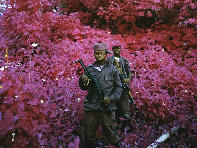 Richard Mosse ('Safe From Harm, North Kivu, eastern Congo', 2012)
