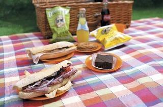 380.rb.eo.tr.picnics.jpg