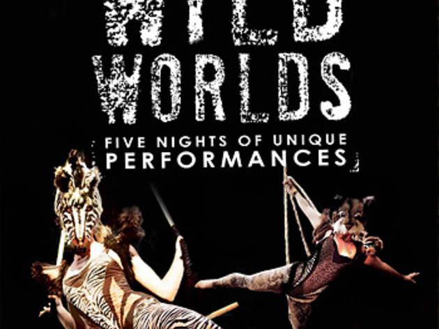 Vault Festival 2014: Wild Worlds