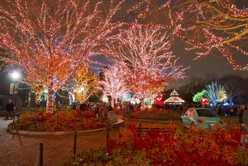 The 10 best things to do during the holidays