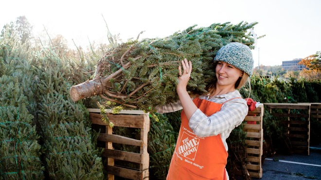 Uber, in partnership with Home Depot, will deliver you a tree on December 5, 2013.