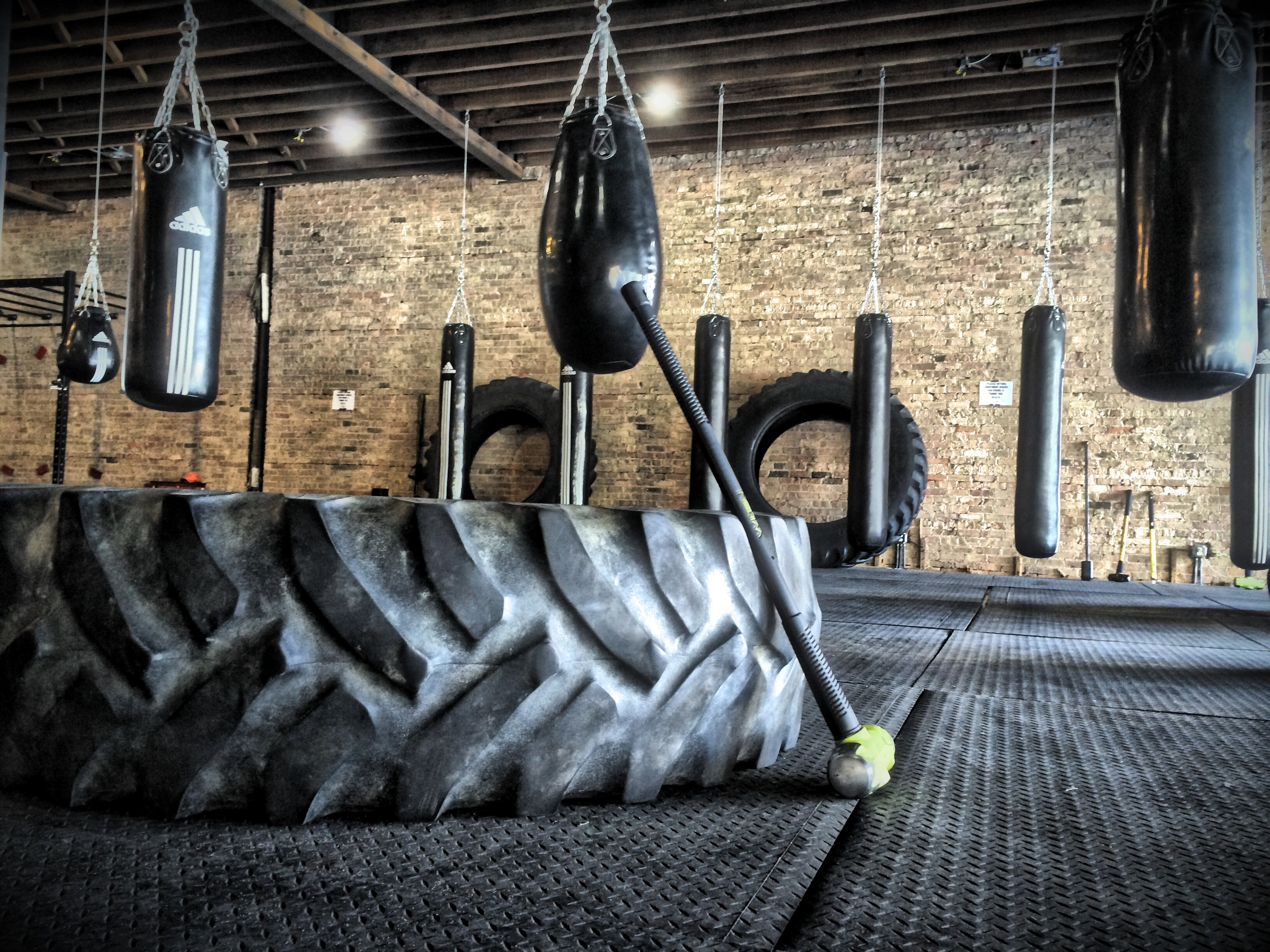 Gym openings in Chicago for fitness and weight loss