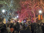 Lincoln Park Zoo Presents ZooLights