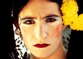 Ocaña, retrant intermitent, Ventura Pons (1978)