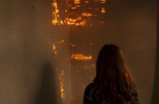 Anni Leppala ('Evening (embers)', 2013)