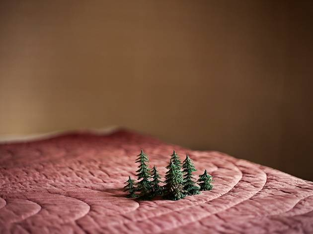 Anni Leppala ('Small Forest', 2013)