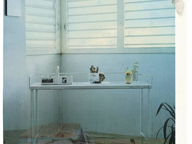 Broomberg and Chanarin ('Untitled' (Scarti 13), 2003)