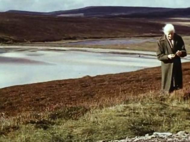 Xcèntric 2014: Una cámara propia. Retratos y diarios fílmicos de Ute Aurand, Margaret Tait y Marie Menken