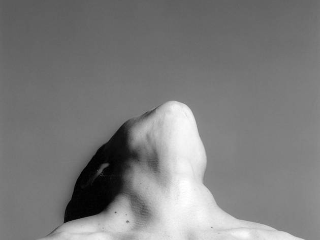 (Robert Mapplethorpe, Lisa Lyon, 1982 / © Robert Mapplethorpe Foundation. Used by permission )