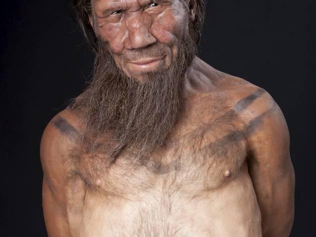 Neanderthal model (©Kevin Webb/NHM Image Resources)