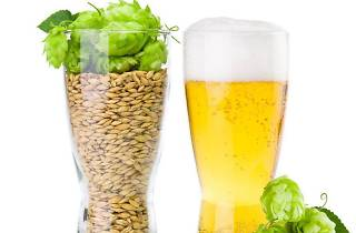 Home Beer Brewing Class