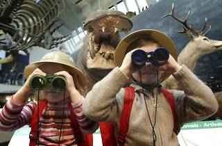 (Kids explore the NHM © Courtesy of Trustees of Natural History Museum)