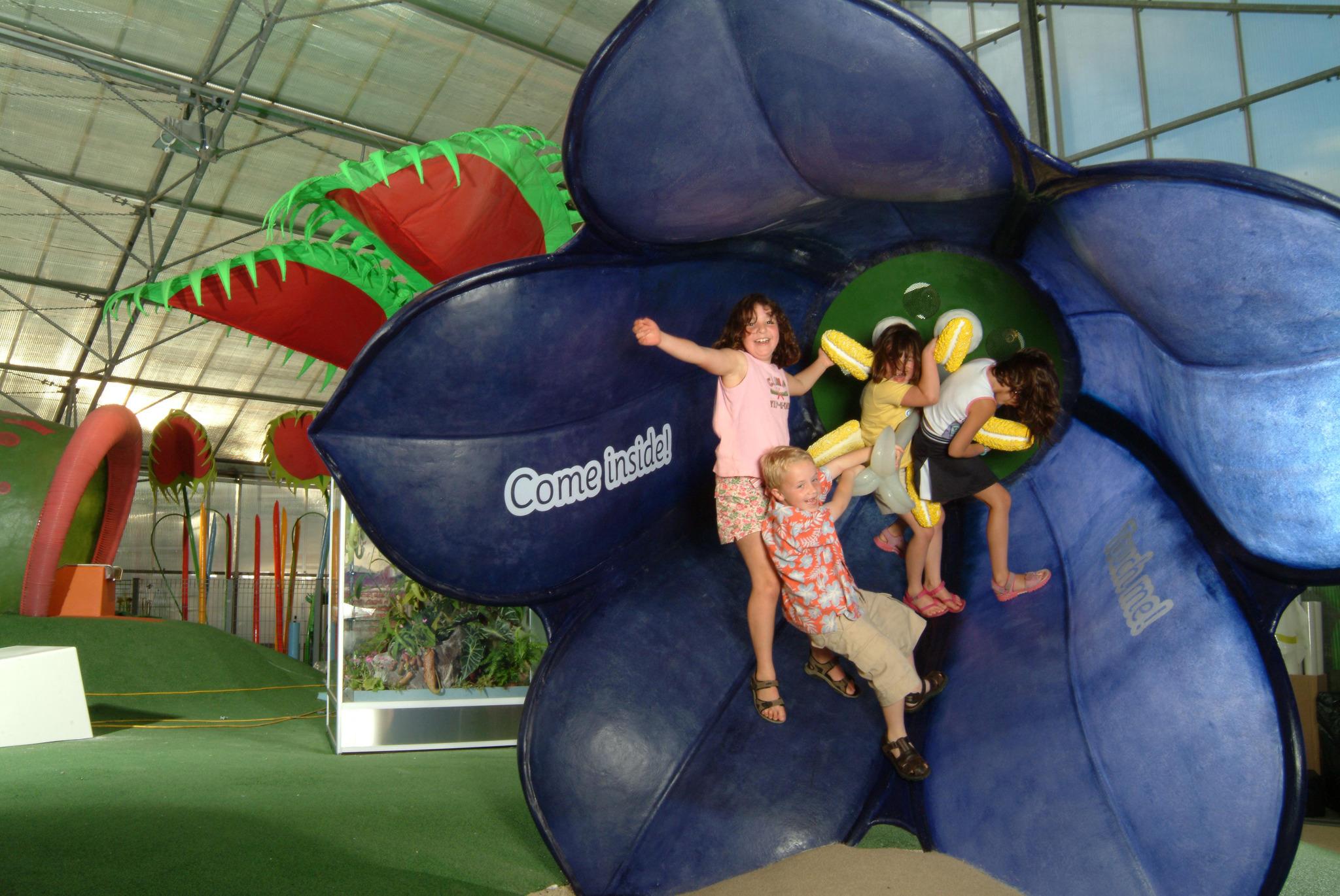 Kew gardens, kids, climber creepers