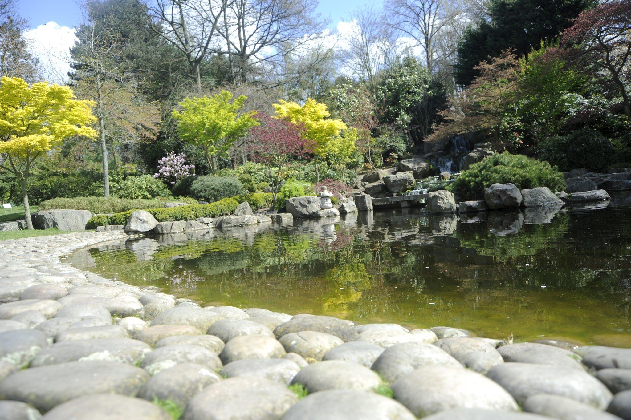Holland Park's Kyoto Garden
