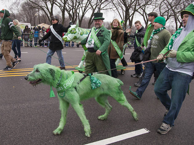 Chicago St. Patrick's Day Parade guide