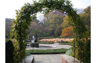 (Photograph: Courtesy Central Park Conservancy)