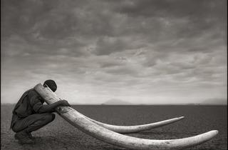 Nick Brandt ('Ranger with Tusks of Killed Elephant, Ambosel'. Courtesy Atlas Gallery)