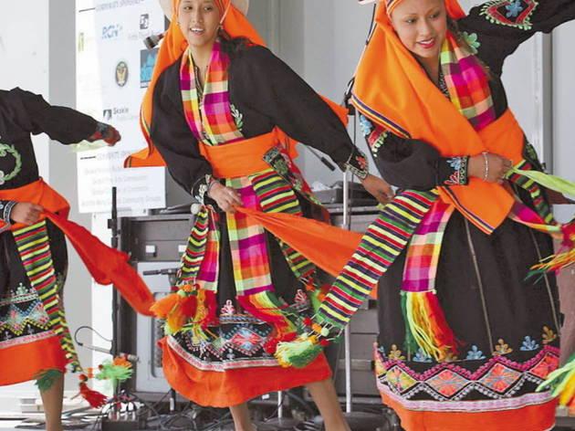 Skokie Festival of Cultures