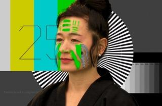 Hito Steyerl (Still from 'How Not To Be Seen. A Fucking Didactic Educational .Mov File', 2013, courtesy the artist)