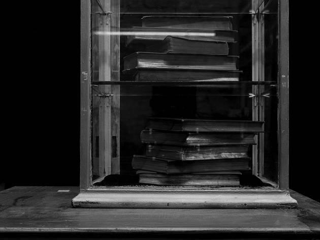 Sarah Jones ('Cabinet (XIII) (Tractatus)', 2014)