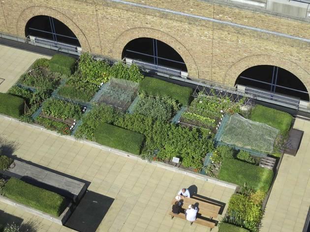 Open Garden Squares Weekend: The Nomura Building Roof Garden