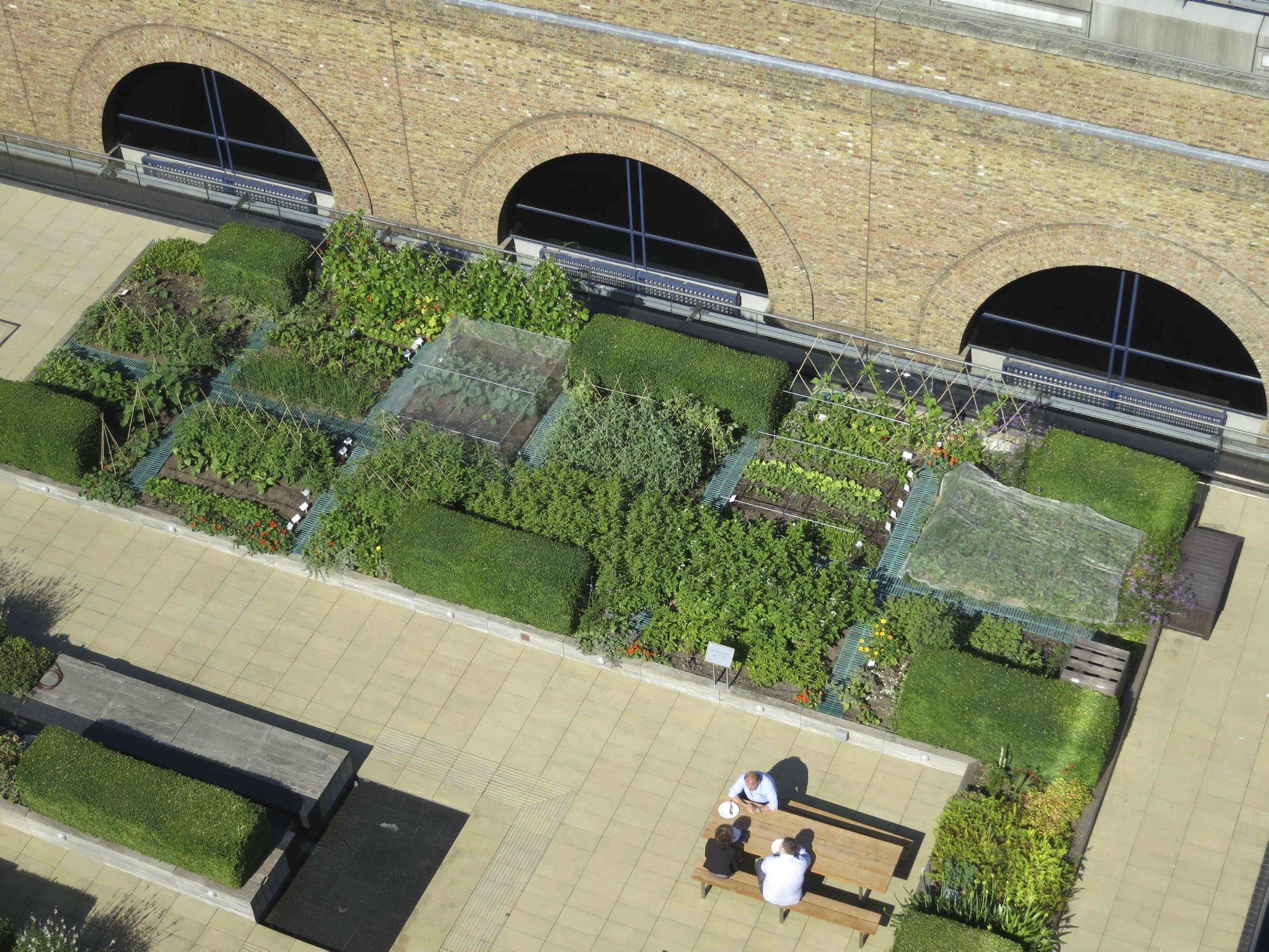 Open Garden Squares Weekend The Nomura Building Roof
