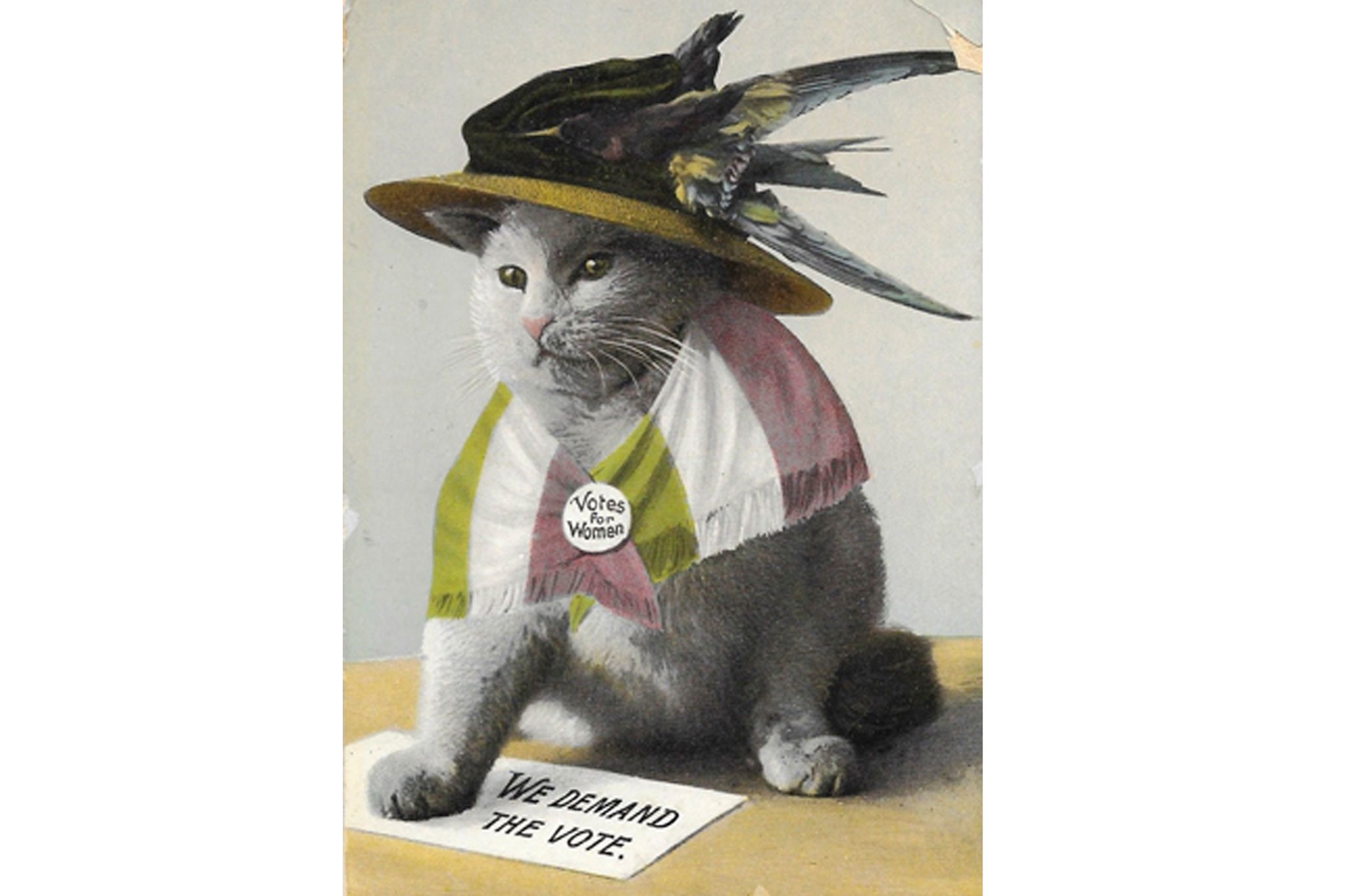 A suffragette postcard from 1910