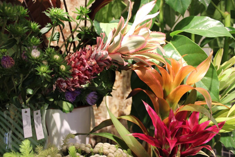 Un bouquet de fleurs qui déboîte • Debeaulieu