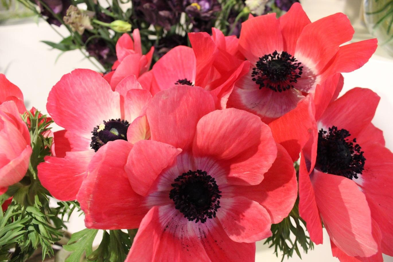 Un bouquet de fleurs ?