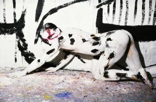 ('Dog', 1981 / © Luciano Castelli)