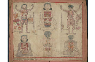 """Bodies in Balance: The Art of Tibetan Medicine"""