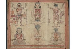 """Bodies in Balance: The Art of Tibetan Medicine"""