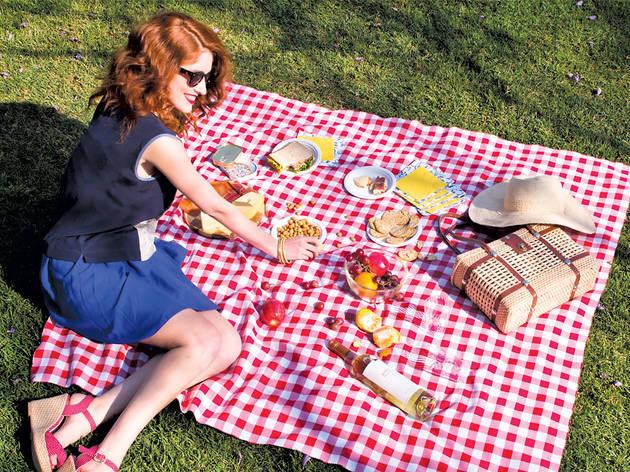 La vida es un picnic