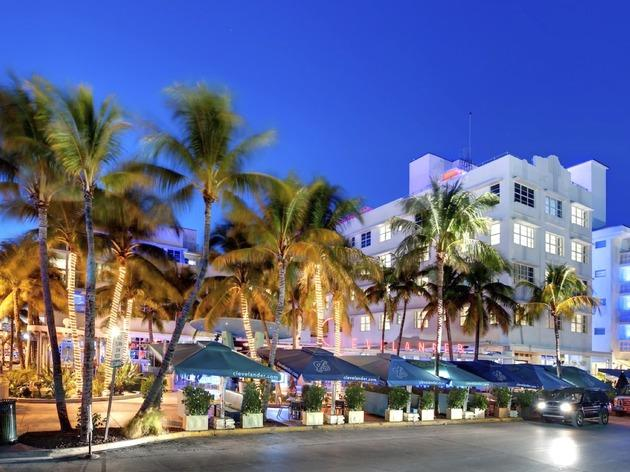 The Clevelander Bars And Lounges Miami