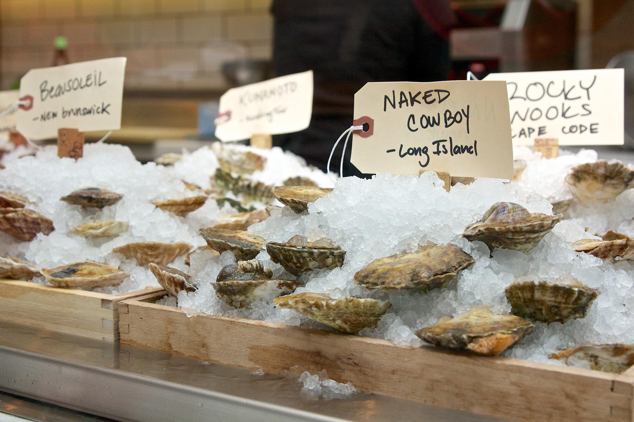 Republique oysters