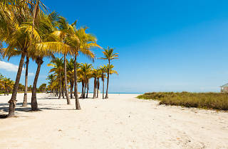 Crandon Park, Wildlife and attractions, Miami