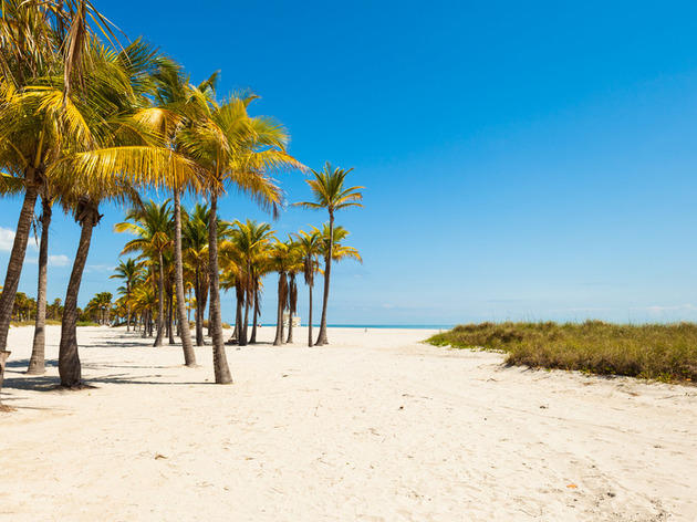 Escape to tranquil Key Biscayne