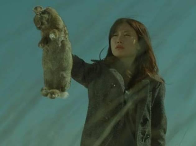 XXII Mostra Internacional de Films de Dones: Lo que haría + Mujer conejo