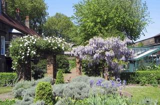 (The gardens © Mandy Williams)