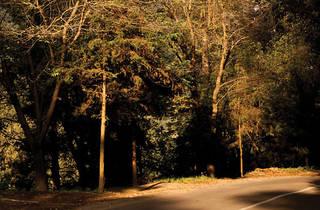 Parque de los Dinamos (Foto: Roberto Beltrán)