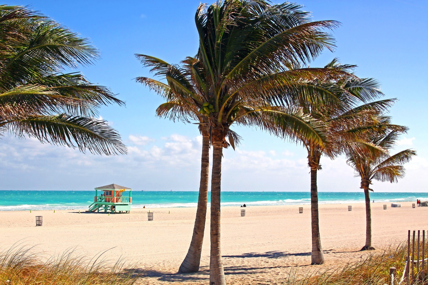 How Long From South Beach To Bal Harbour By Bus