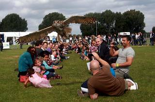 Easter Country Fair, River Lee Country Park