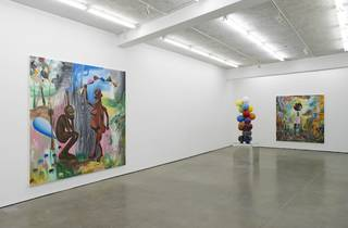 Djordje Ozbolt (Installation view of 'Mens sana in corpore sano' at Herald St, 2014)